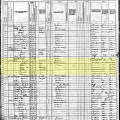 1880 US Census record for household of John Williams, Golden, Colorado